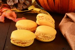 Dyniowi Macaroons Obraz Royalty Free