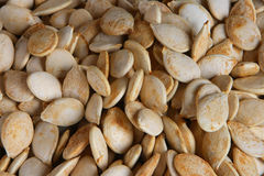 dyniowi nasion Obraz Stock