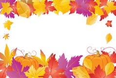 dyniowi ramowi jesień liść Fotografia Stock
