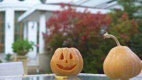 Dyniowy Jack na stole w jardzie, przygotowanie dla Halloween przyjęcia, twórczość zdjęcie wideo