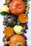Dyniowy sok, jesieni żniwo warzywa, owoc i dokrętki, th zdjęcie royalty free
