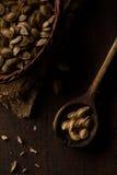 dyniowy tło ziarna zamknięci karmowi dyniowi Obraz Royalty Free