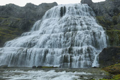 Dynjandi vattenfall Royaltyfri Bild