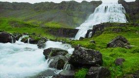 Dynjandi Wasserfall in Island stock video
