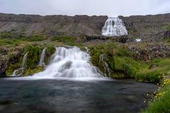Dynjandi waterfall, Iceland. Royalty Free Stock Images