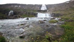 Dynjandi waterfall stock video footage