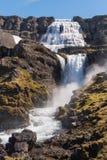 Dynjandi waterfall Royalty Free Stock Image