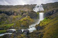 dynjandiiceland vattenfall Royaltyfri Bild