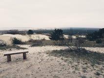 dynklaipedalithuania sand Royaltyfria Foton
