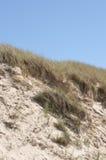 Dynlandskap med sand Arkivfoto