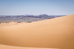 dynsahara sand Arkivfoto