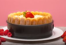 Dyplomaty tort z, Charlotte tort z lub strwaberries i dama palcami w wypiekowej niecce na drewnianym stole/ fotografia stock