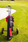 Dyr golf Arkivfoto