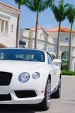 Dyr sportbil med tropisk bakgrund Royaltyfri Bild