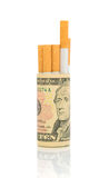 dyr vananr. för begrepp - röka Arkivfoton