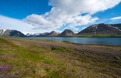 Dyrafjordur, Westfjord, Iceland Royalty Free Stock Images