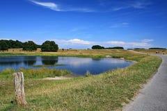 dyrehave πάρκο Στοκ εικόνες με δικαίωμα ελεύθερης χρήσης