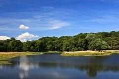 dyrehave πάρκο Στοκ Φωτογραφίες