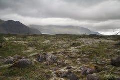 Dyrholaeyschiereiland IJsland royalty-vrije stock foto's