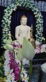 Dyrkan till Lord Buddha Arkivfoto
