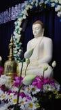 Dyrkan till Lord Buddha Royaltyfri Fotografi