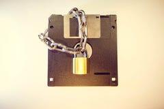 Dyskietka ochrania kędziorkiem z łańcuchem fotografia stock