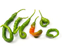 Dysmorphism pepper Stock Photo