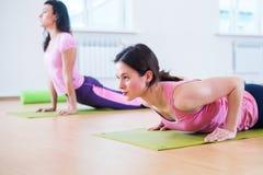 Dysponowana kobieta robi deski ćwiczeniu i pcha podnosi działanie na brzusznych mięśni triceps Obraz Royalty Free