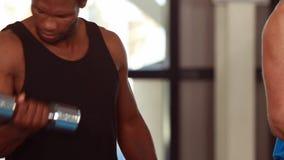 Dysponowani ludzie podnosi dumbbells w gym zbiory wideo