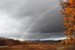 Dystert höstlandskap med regnbågen Royaltyfri Bild