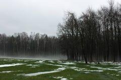 Dystert landskap för höst Fotografering för Bildbyråer