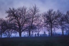Dystert landskap med den gamla kyrkogården Arkivfoto