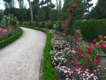 Dywan jest kwiatu łąką obraz stock