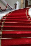 dywanowa czerwień Zdjęcia Stock