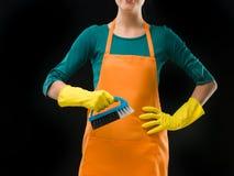 Dywanowy cleaner Fotografia Royalty Free