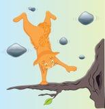 Dzen-gatto Immagini Stock Libere da Diritti