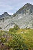 Dzhangal和momin dvor峰顶, Pirin山全景  库存图片