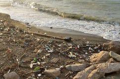 Dzhubga avskräde som kastas på kusten av Strom Royaltyfria Foton