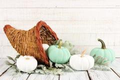 Dziękczynienia cornucopia z bielem i cyraneczek banie przeciw białemu drewnu obrazy stock