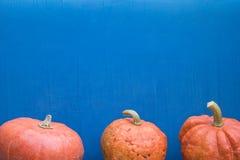 Dziękczynienia, Halloweenowego lub Zdrowego Llifestyle projekt z kopii przestrzenią, Kolorowy błękitny tło z pomarańczowymi bania obrazy royalty free