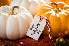 Dziękczynienia kartka z pozdrowieniami z handwriting ` dziękczynienia dnia Szczęśliwy ` zdjęcie royalty free