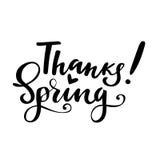 Dziękczynienia kartka z pozdrowieniami z zwrotem: Dzięki wiosna Wektor odosobniona ilustracja: szczotkarska kaligrafia, ręki lite Zdjęcie Royalty Free