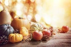 Dziękczynienia, spadku lub jesieni powitania tło z banią, fotografia royalty free
