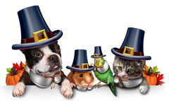 Dziękczynienia zwierzęcia domowego świętowanie royalty ilustracja