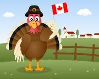 Dziękczynienie dnia scena - Indyczy Kanada ilustracja wektor