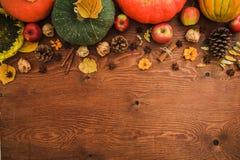 Dziękczynienie dzień, jesieni tło Bania, melon i jabłka owocowi na drewnianym tle, Mieszkanie nieatutowy, odgórny widok fotografia stock