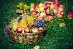 Dziękczynienie, jesieni żniwo - sezonowa owoc w łozinowym koszu Zdjęcie Stock