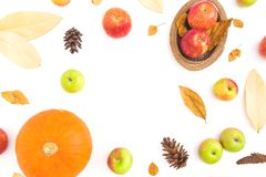 Dziękczynienie jesieni rama robić spadki suszący liście, sosnowi rożki, jabłka i bania, na białym tle Mieszkanie nieatutowy, odgó obrazy stock