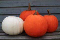 Dziękczynienie, spadek, jesieni tło Obrazy Royalty Free