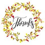 Dzięki pisze list kolekcję Handdrawn typografia Fotografia Royalty Free